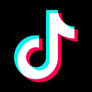 Tik Tok Logo 1